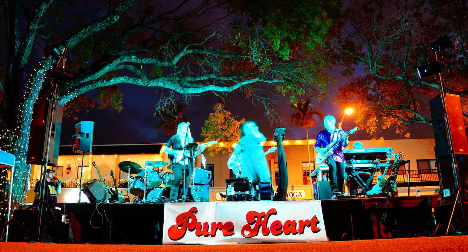 PURE HEART Tribute Band